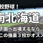 「高校野球」南北海道で甲子園へ出場したいなら、この強豪3校へ進学しなさい!そのおすすめ理由も解説