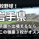 「高校野球」岩手県で甲子園へ出場したいなら、この強豪3校へ進学しなさい!そのおすすめ理由も解説