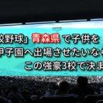 「高校野球」青森県で子供を甲子園へ出場させたいなら、この強豪3校で決まり!