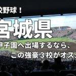 「高校野球」宮城県で甲子園へ出場したいなら、この強豪3校へ進学しなさい!そのおすすめ理由も解説