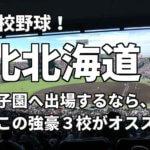 「高校野球」北北海道で甲子園へ出場したいなら、この強豪3校へ進学しなさい!そのおすすめ理由も解説