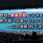 「高校野球」東東京都で子供を甲子園へ出場させたいなら、この強豪3校で決まり!