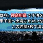「高校野球」神奈川県で子供を甲子園へ出場させたいなら、この強豪3校で決まり!