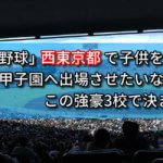 「高校野球」西東京都で子供を甲子園へ出場させたいなら、この強豪3校で決まり!