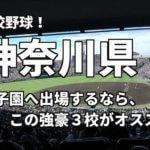 「高校野球」神奈川県で甲子園へ出場したいなら、この強豪3校へ進学しなさい!そのおすすめ理由も解説