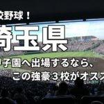 「高校野球」埼玉県で甲子園へ出場したいなら、この強豪3校へ進学しなさい!そのおすすめ理由も解説