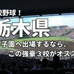 「高校野球」栃木県で甲子園へ出場したいなら、この強豪3校へ進学しなさい!そのおすすめ理由も解説