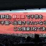 「高校野球」静岡県で子供を甲子園へ出場させたいなら、この強豪3校で決まり!