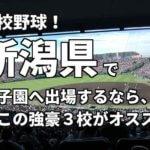 「高校野球」新潟県で甲子園へ出場したいなら、この強豪3校へ進学しなさい!そのおすすめ理由も解説