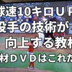 プロが教える投手の技術が向上する教材DVD2選【プレゼントに最適】