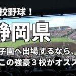 「高校野球」静岡県で甲子園へ出場したいなら、この強豪3校へ進学しなさい!そのおすすめ理由も解説