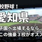 「高校野球」愛知県で甲子園へ出場したいなら、この強豪3校へ進学しなさい!そのおすすめ理由も解説