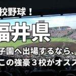 「高校野球」福井県で甲子園へ出場したいなら、この強豪3校へ進学しなさい!そのおすすめ理由も解説