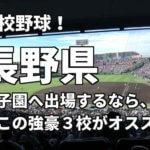 「高校野球」長野県で甲子園へ出場したいなら、この強豪3校へ進学しなさい!そのおすすめ理由も解説
