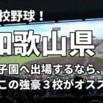 「高校野球」和歌山県で甲子園へ出場したいなら、この強豪3校へ進学しなさい!そのおすすめ理由も解説