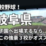 「高校野球」岐阜県で甲子園へ出場したいなら、この強豪3校へ進学しなさい!そのおすすめ理由も解説