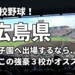 「高校野球」広島県で甲子園へ出場したいなら、この強豪3校へ進学しなさい!そのおすすめ理由も解説