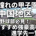 「憧れの甲子園」中国地区の野球部必見!おすすめ強豪高校進学先一覧。