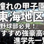 「憧れの甲子園」東海地区の野球部必見!おすすめ強豪高校進学先一覧。