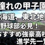 「憧れの甲子園」北海道、東北地区の野球部必見!おすすめ強豪高校進学先一覧。