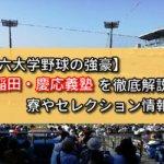 【東京六大学野球の強豪】早稲田・慶応義塾を徹底解説!寮やセレクション情報など