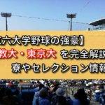 【東京六大学野球の強豪】立教大・東京大を完全解説!寮やセレクション情報など