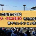 【首都大学野球の強豪】東海大・日本体育大を完全解説!寮やセレクション情報など