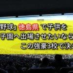 「高校野球」徳島県で子供を甲子園へ出場させたいなら、この強豪3校で決まり!
