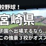 「高校野球」宮崎県で甲子園へ出場したいなら、この強豪3校へ進学しなさい!そのおすすめ理由も解説