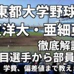 「東都大学野球」強豪東洋大・亜細亜大を徹底解説。注目選手から部員数、寮、学費、偏差値まで教えます。