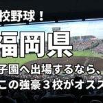 「高校野球」福岡県で甲子園へ出場したいなら、この強豪3校へ進学しなさい!そのおすすめ理由も解説