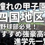 「憧れの甲子園」四国地区の野球部必見!おすすめ強豪高校進学先一覧。