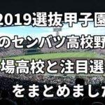 「2019選抜甲子園」春のセンバツ高校野球、出場高校と注目選手をまとめました。