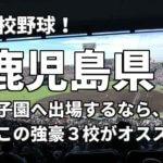 「高校野球」鹿児島県で甲子園へ出場したいなら、この強豪3校へ進学しなさい!そのおすすめ理由も解説