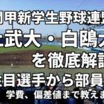「関甲新学生野球」強豪上武大学・白鷗大学を徹底解説。全国を狙うならこの2大学!