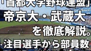 横浜青葉ボーイズ「OB紹介」 - biz-park.net