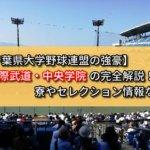 【千葉県大学野球連盟の強豪】国際武道・中央学院の完全解説!寮やセレクション情報など