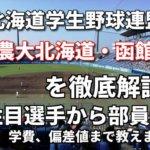 「北海道学生野球連盟」強豪東農大北海道オホーツク・函館大学を徹底解説。全国を狙うならこの2大学!