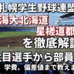 「札幌学生野球連盟」強豪東海大北海道キャンパス・星槎道都大学を徹底解説。全国を狙うならこの2大学!