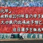 「令和元年」高校野球2019年夏の甲子園/大分県の出場校予想と注目選手を徹底解説