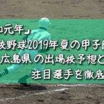 「令和元年」高校野球2019年夏の甲子園/広島県の出場校予想と注目選手を徹底解説