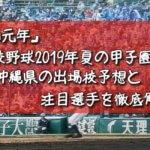 「令和元年」高校野球2019年夏の甲子園/沖縄県の出場校予想と注目選手を徹底解説