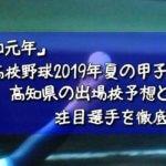「令和元年」高校野球2019年夏の甲子園/高知県の出場校予想と注目選手を徹底解説