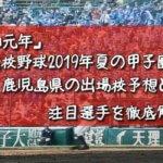 「令和元年」高校野球2019年夏の甲子園/鹿児島県の出場校予想と注目選手を徹底解説