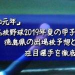 「令和元年」高校野球2019年夏の甲子園/徳島県の出場校予想と注目選手を徹底解説