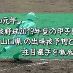 「令和元年」高校野球2019年夏の甲子園/山口県の出場校予想と注目選手を徹底解説