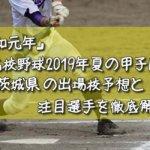 「令和元年」高校野球2019年夏の甲子園/茨城県の出場校予想と注目選手を徹底解説