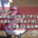 「令和元年」高校野球2019年夏の甲子園/京都府の出場校予想と注目選手を徹底解説