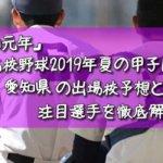 「令和元年」高校野球2019年夏の甲子園/愛知県の出場校予想と注目選手を徹底解説
