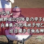 「令和元年」高校野球2019年夏の甲子園/兵庫県の出場校予想と注目選手を徹底解説